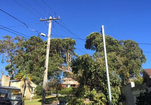 Installation of Hardwood Timber and Galvanised Steel Power Poles